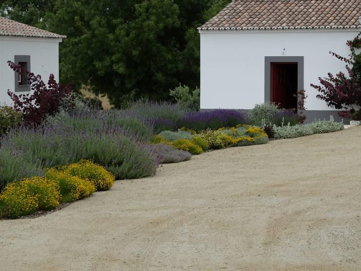 Vista sobre canteiro de aromáticas: Jardins  por Atelier Jardins do Sul
