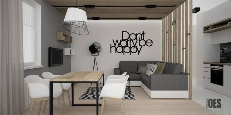 Projekt wnętrz mieszkania w Katowicach: styl , w kategorii Salon zaprojektowany przez OES architekci