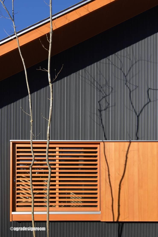 樹形の細く高い樹木の影を外壁に落とす(Proyectar la sombra del árbol en la pared externa.): アグラ設計室一級建築士事務所 agra design roomが手掛けた家です。,