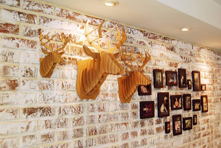 모던 브라운 사슴: C&K Global의  벽 & 바닥