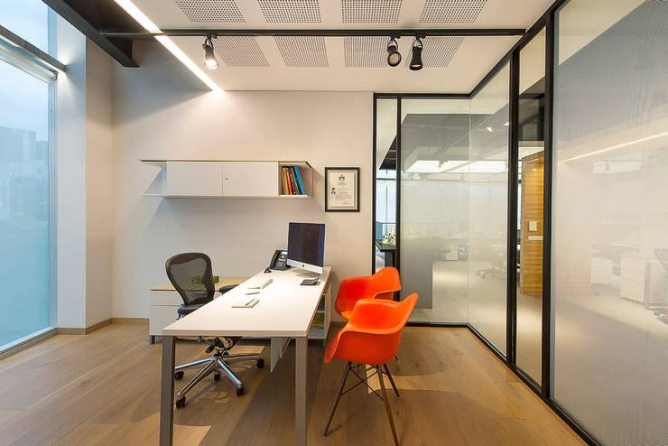 Oficinas Paseo Castelar : Estudios y oficinas de estilo moderno por Hansi Arquitectura
