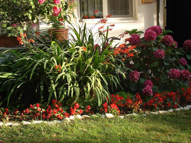 konseptDE Peyzaj Fidancılık Tic. Ltd. Şti. – Bitkilendirme çalışması: akdeniz tarzı tarz Bahçe