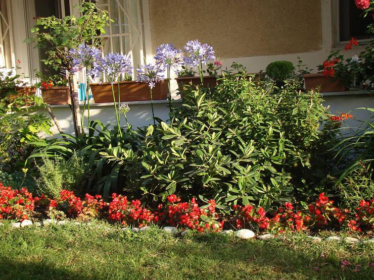 konseptDE Peyzaj Fidancılık Tic. Ltd. Şti. – Bitkilendirme çalışması:  tarz Bahçe