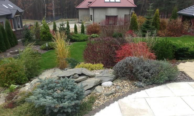 Ogród Naturalistyczny: styl , w kategorii Ogród zaprojektowany przez BioArt Ogrody, Architektura Krajobrazu