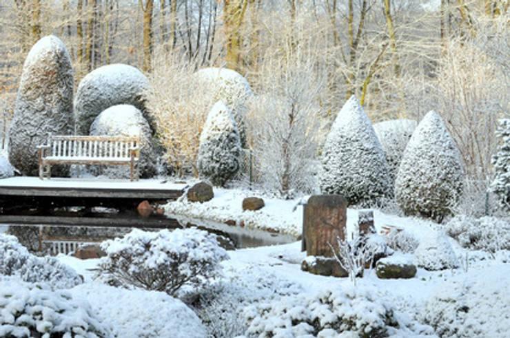 Сады в . Автор – GARDOMAT - Die Gartenideenmacher