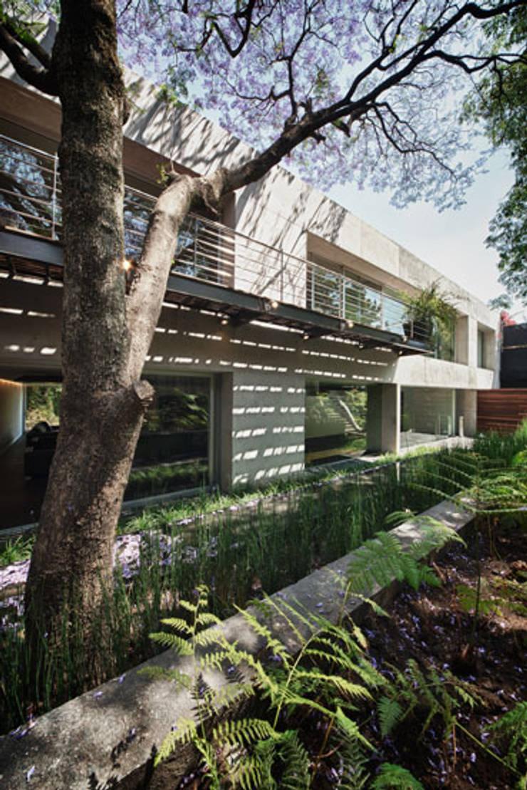 Casa Galeana: Jardines de estilo  por grupoarquitectura