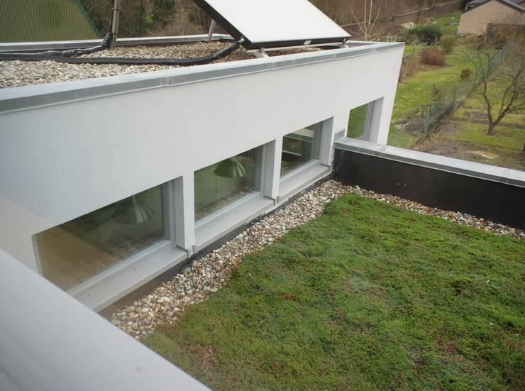 Toit vert: Maisons de style  par Bureau d'Architectes Desmedt Purnelle