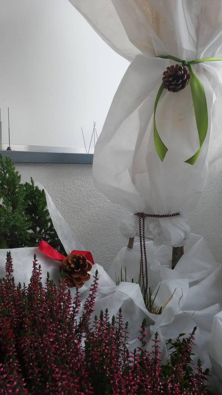 zimą też może być ładnie :): styl , w kategorii Taras zaprojektowany przez ARCHITEKTONIA Studio Architektury Krajobrazu Agnieszka Szamocka -Niemas,Klasyczny