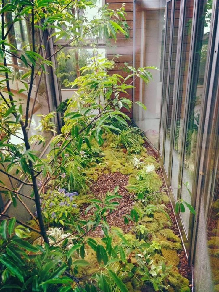 苔庭: 庭園空間ラボ teienkuukan Laboが手掛けた庭です。,