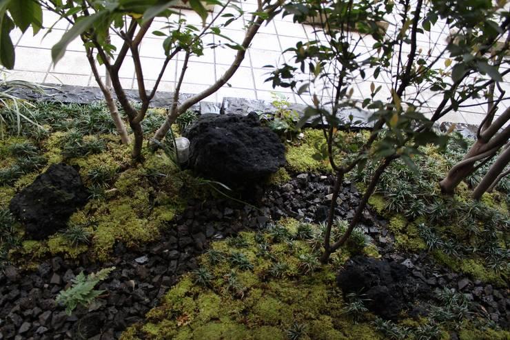 Сады в . Автор – 庭園空間ラボ teienkuukan Labo
