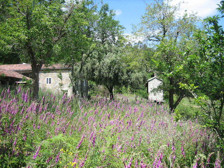 Сады в . Автор – Ezcurra e Ouzande arquitectura