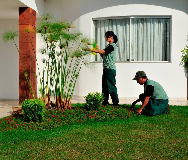 Aplicação de fertilizantes naturais e manutenção da forração: Jardim  por Ecojardim