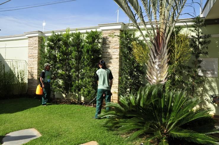Aplicação de fertilizantes e limpeza do gramado: Jardim  por Ecojardim