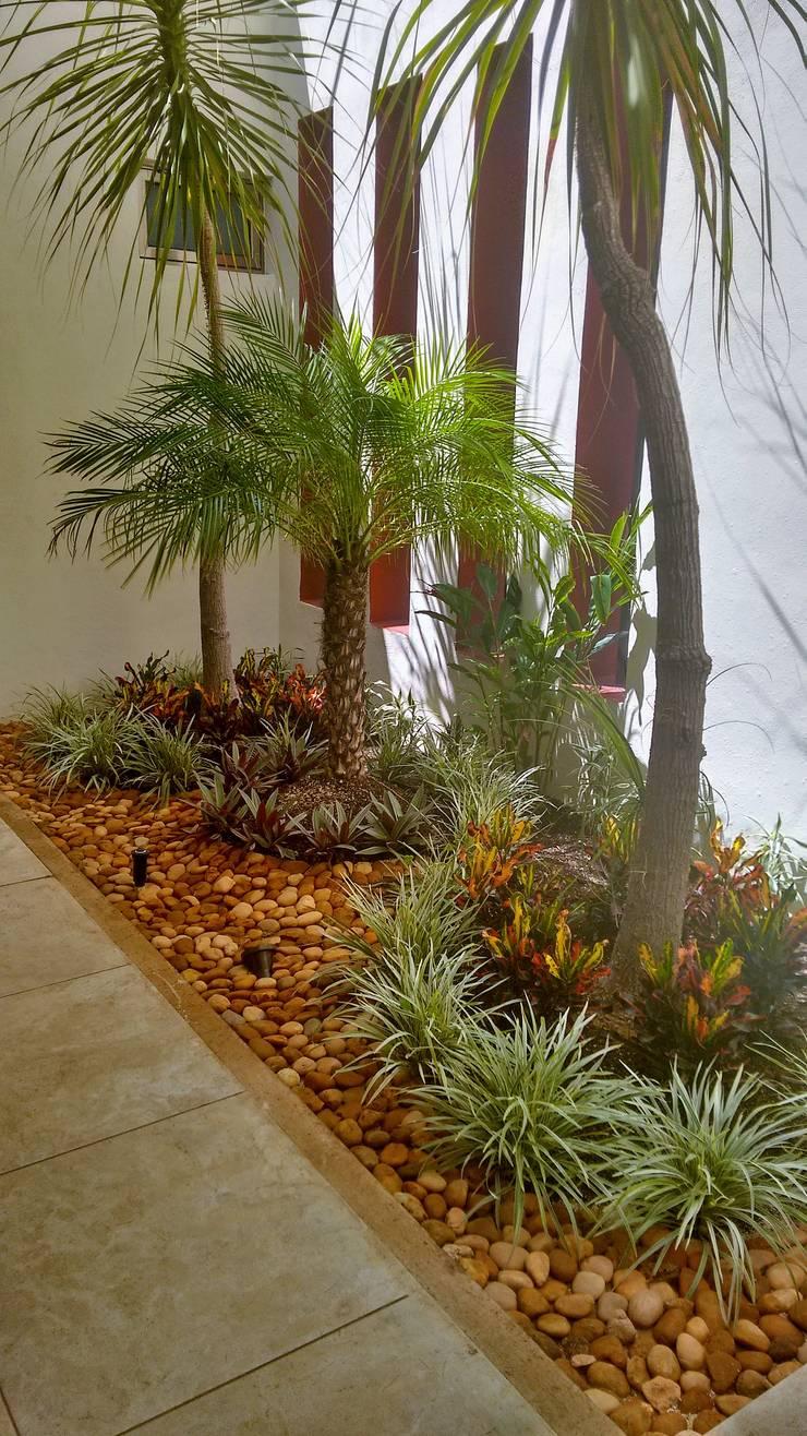Jardinera en Vestíbulo de acceso - final de EcoEntorno Paisajismo Urbano