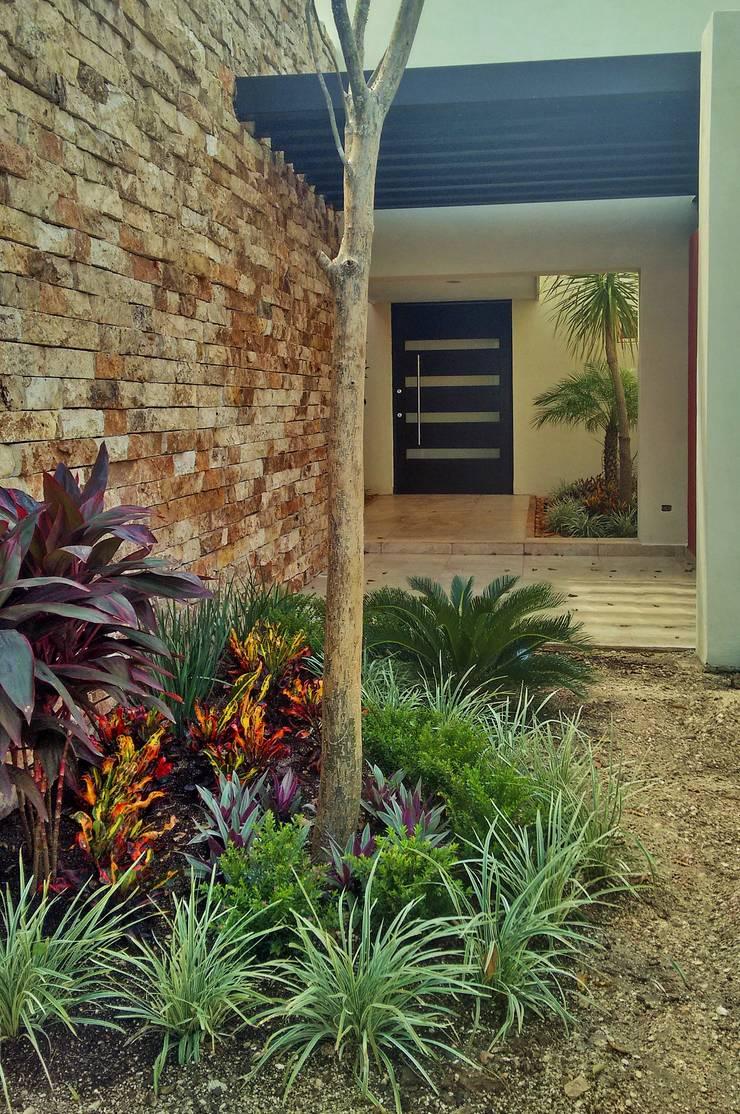 Jardín en vestíbulo de acceso - final de EcoEntorno Paisajismo Urbano