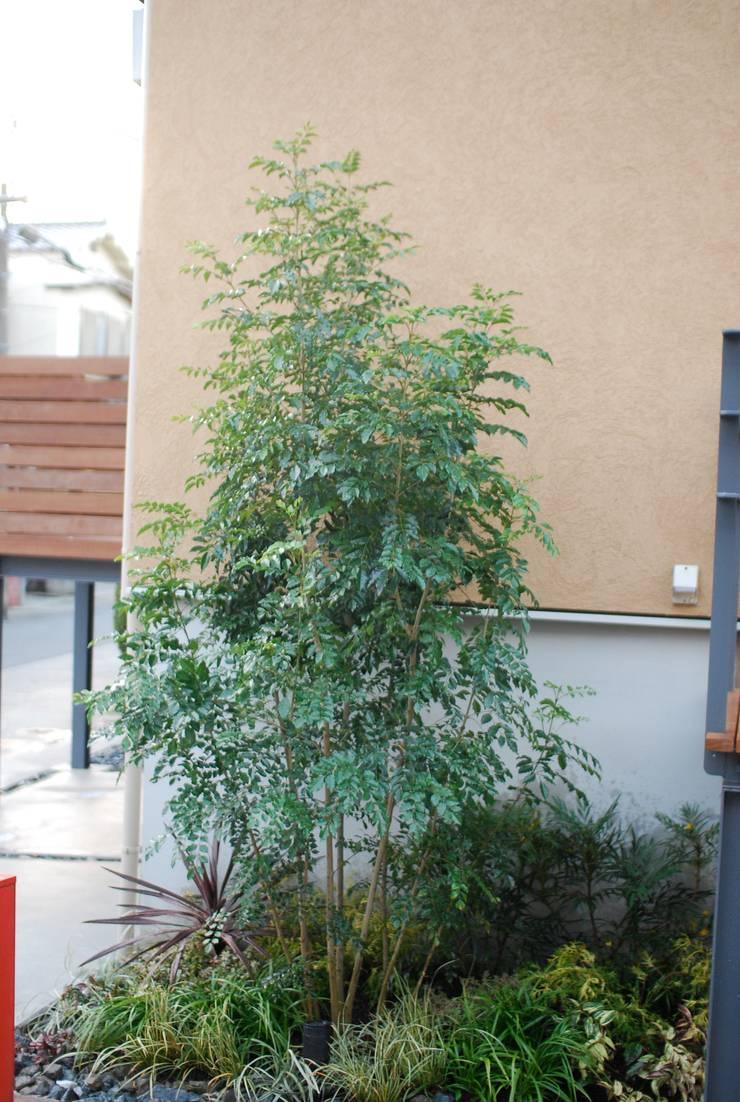 KB House: 株式会社グリーンプラスが手掛けた庭です。