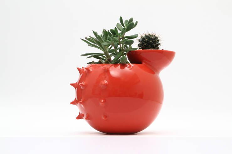 katmandu ceramica의  발코니, 베란다 & 테라스