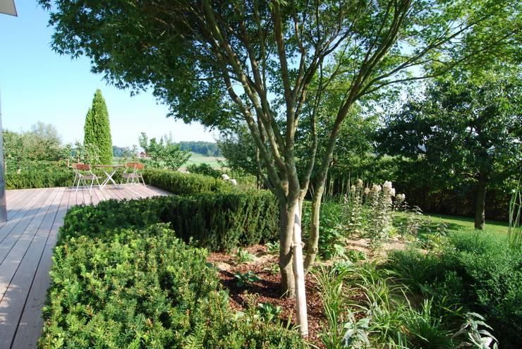 Schiffsdeck im  Obsthain:  Garten von Lustenberger Schelling Landschaftsarchitektur,Modern