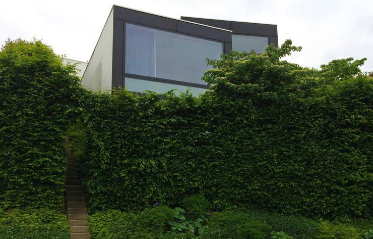 Сады в . Автор – Lustenberger Schelling Landschaftsarchitektur