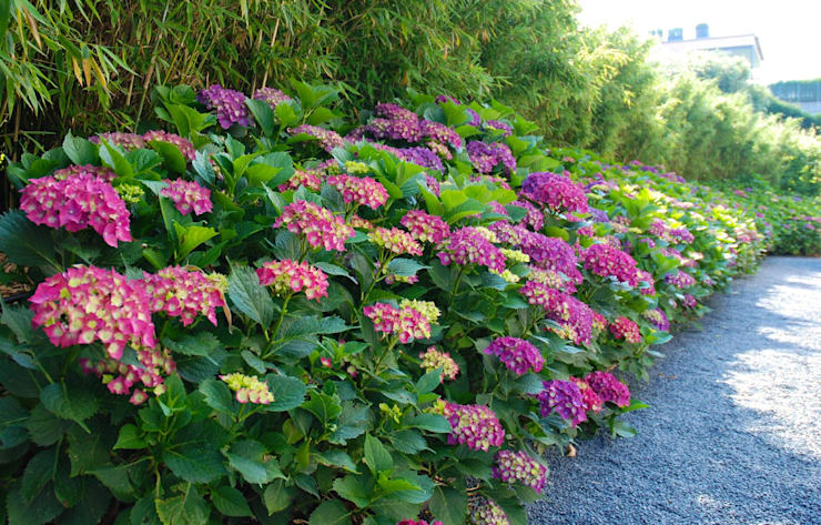 Wie Kann Ich Mir Selber Einen Gunstigen Gartenweg Anlegen