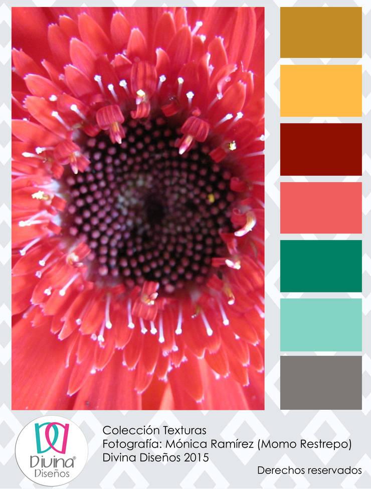 Carta de color Texturas - Estambres:  de estilo  por Divina Diseños Decoración, Moderno