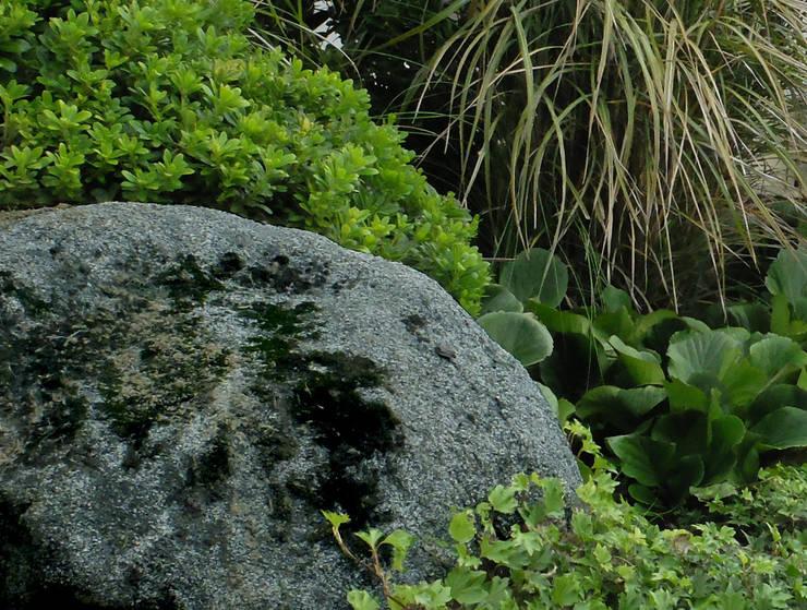 Banco ondulado com vista ao campo: Jardins  por Atelier Jardins do Sul