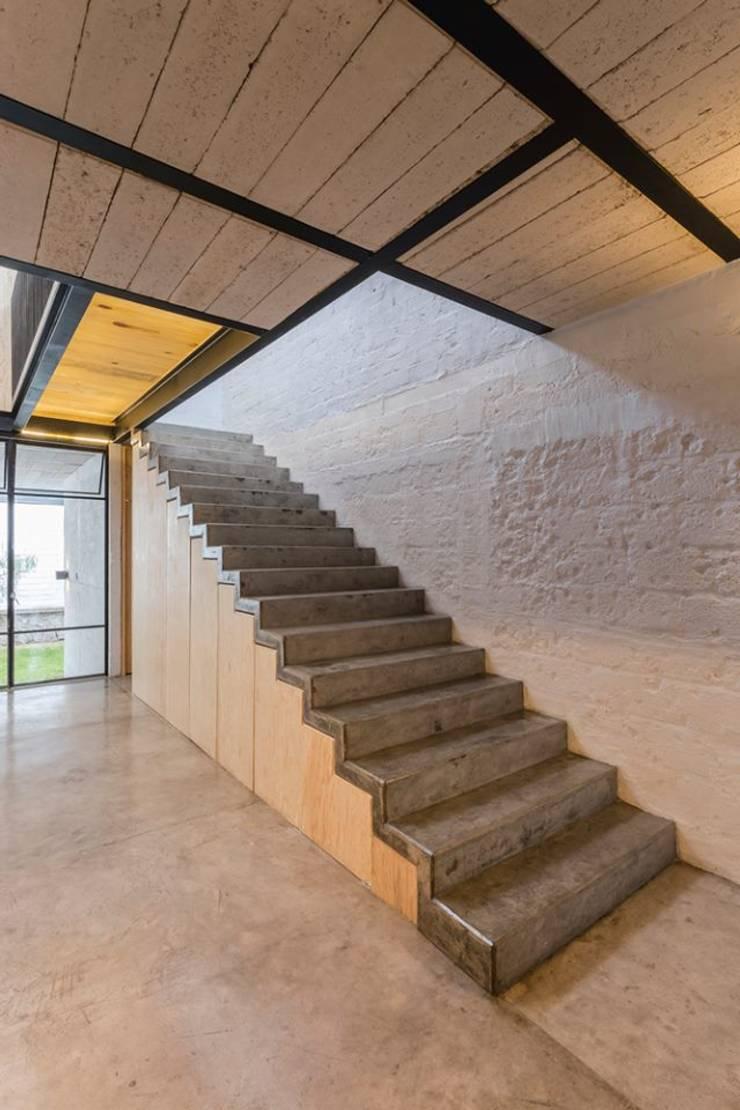 escalera Pasillos, vestíbulos y escaleras eclécticos de aguila-reals Ecléctico
