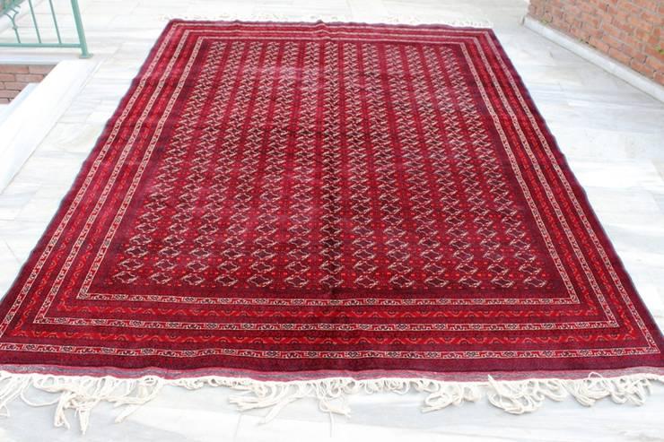 Heritage Nomadic Art Gallery – Afghan Big size area rug :  tarz