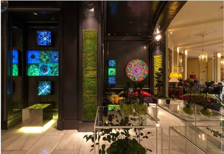 Monamour Natural Design의  정원