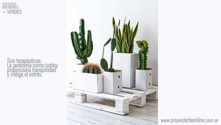 + ESPACIOS VERDES +: Jardines de estilo moderno por info9138