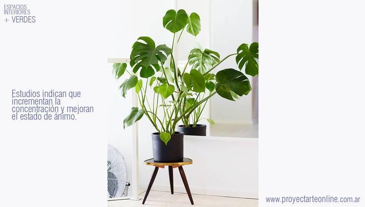 + ESPACIOS VERDES +: Jardines de estilo  por info9138