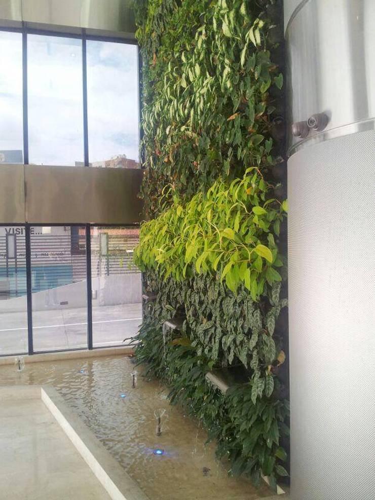 Jardin de style  par La Fabrica, arquitectos y Asociados C.A.