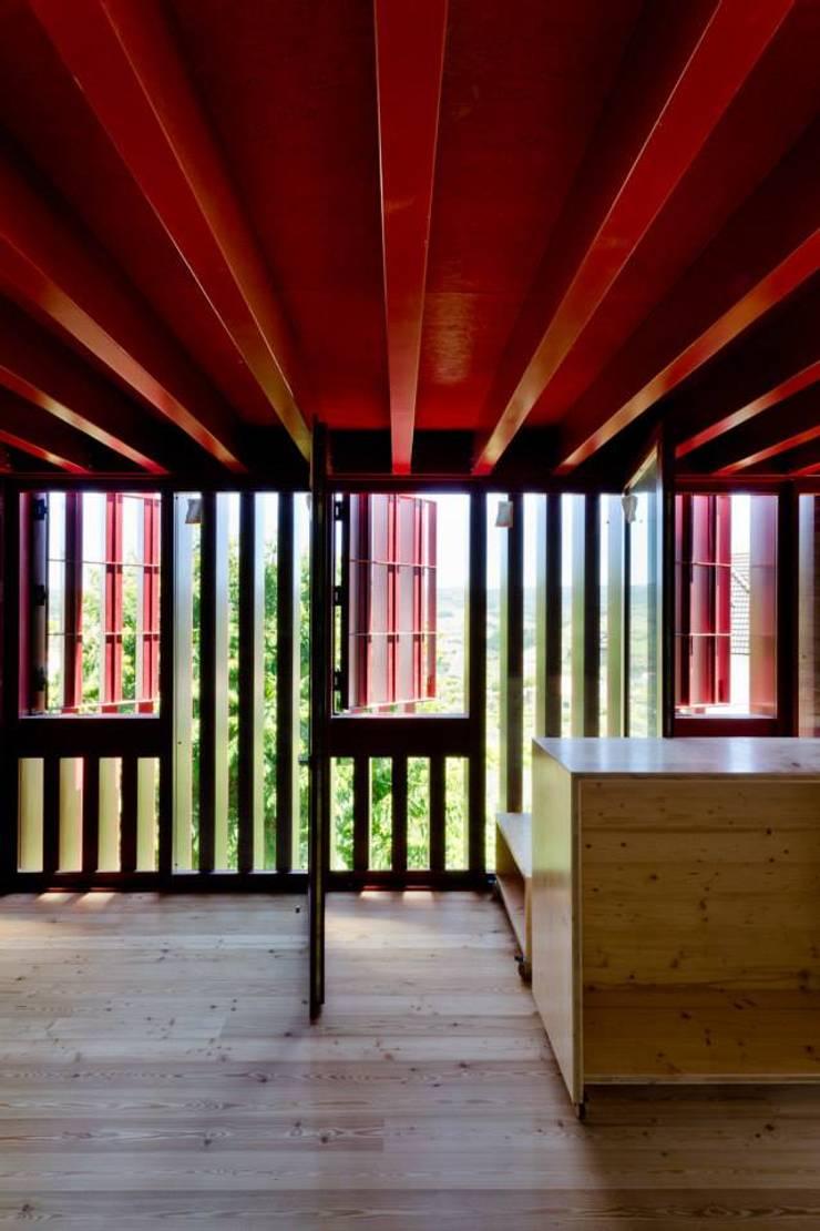 Reabilitação de Casa em Vilar de Maçada:   por olgafeio.arquitectura