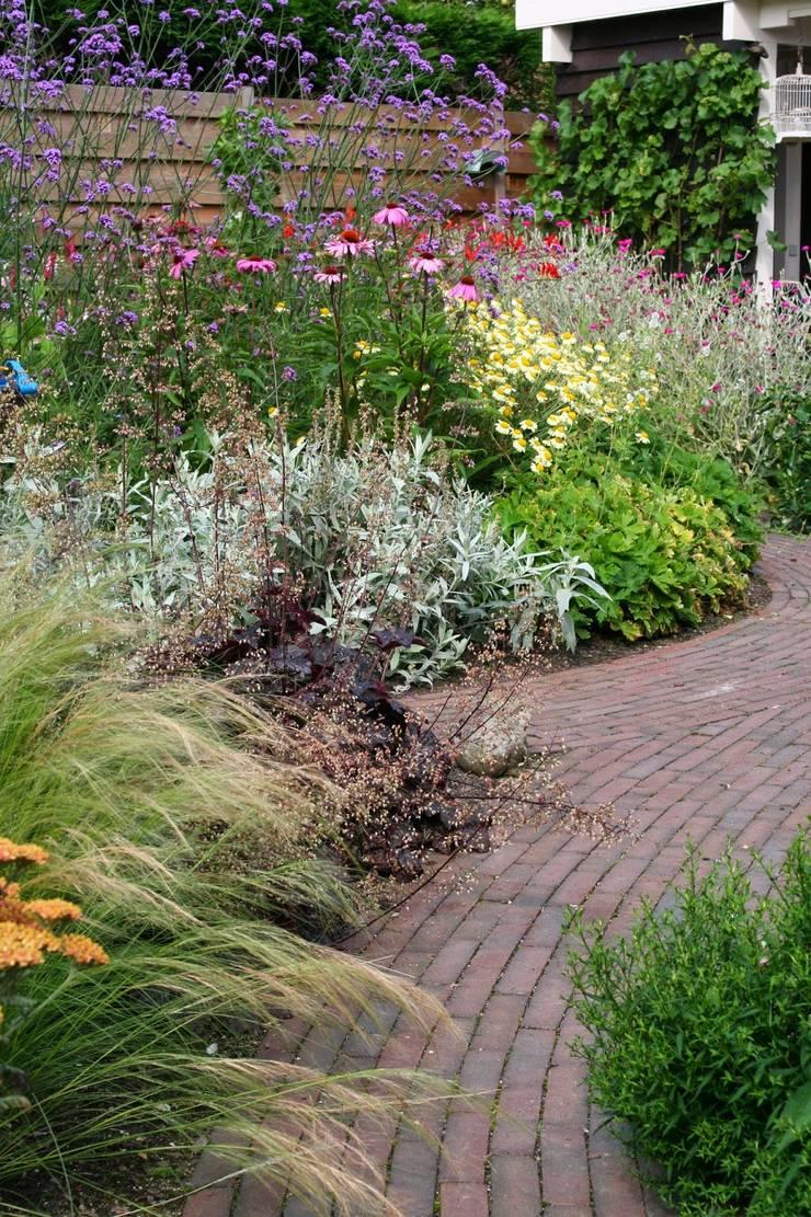 Kleurrijke achtertuin:  Tuin door Carla Wilhelm