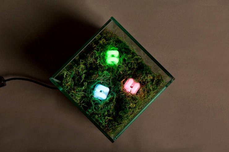 위에서 본 RGB Land: 글로리홀 GLORYHOLE LIGHT SALES의  거실,