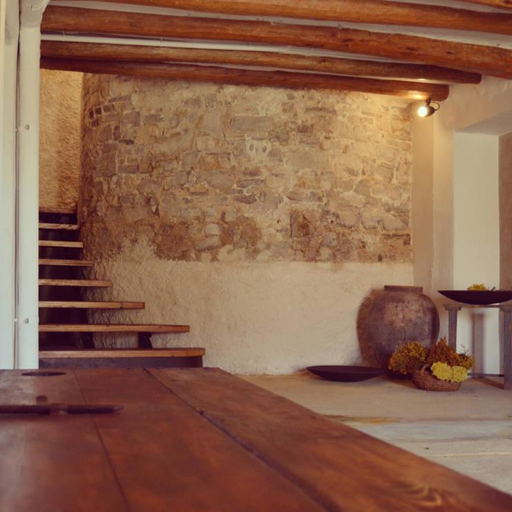 rehabilitación integral de masia, para turismo rural: Bodegas de estilo rural de raddi ARQUITECTES