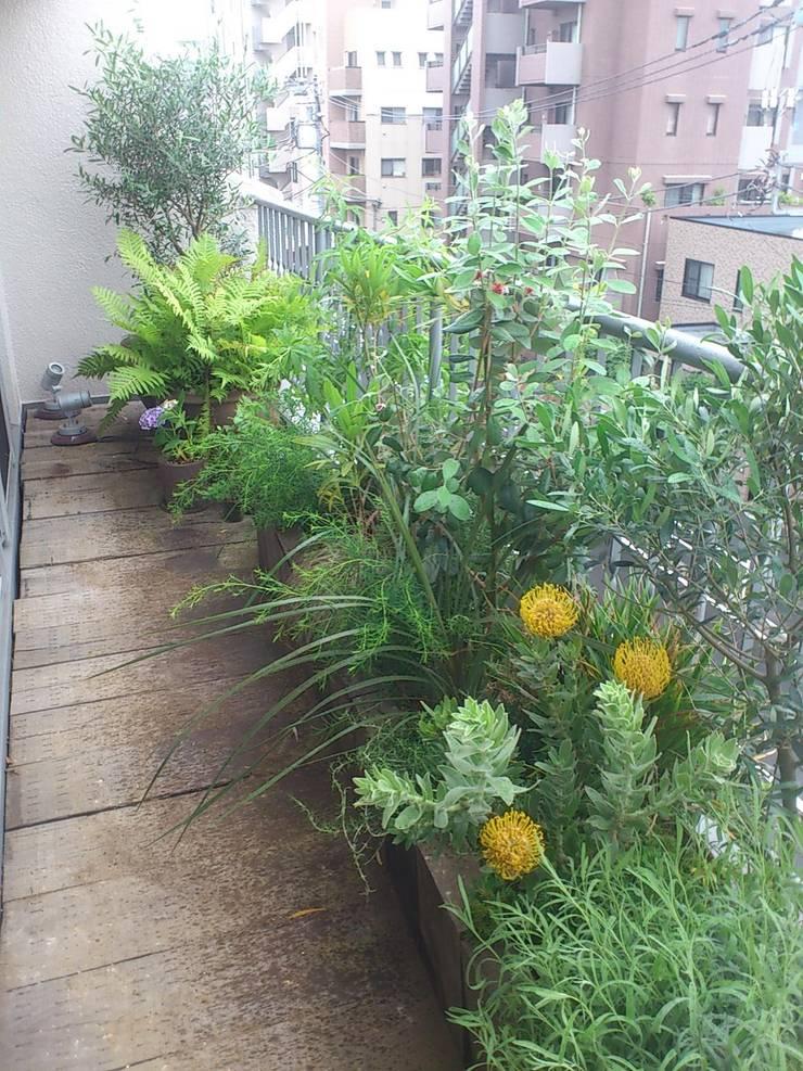 バルコニーでの植栽: LUFFが手掛けたテラス・ベランダです。