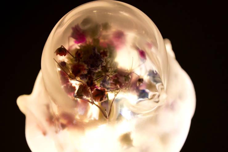 동굴전구 Cave bulb (Dried flower Ver): 글로리홀 GLORYHOLE LIGHT SALES의 열렬한 ,휴양지