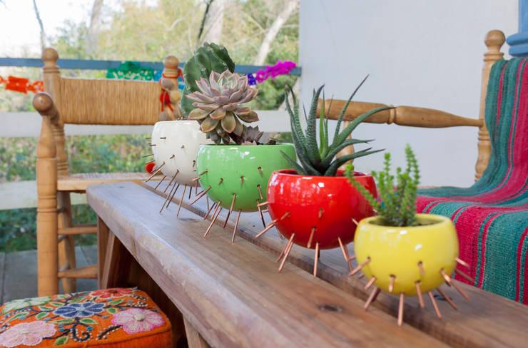 macetas Cactus: Balcones y terrazas de estilo  por Cuantatienda