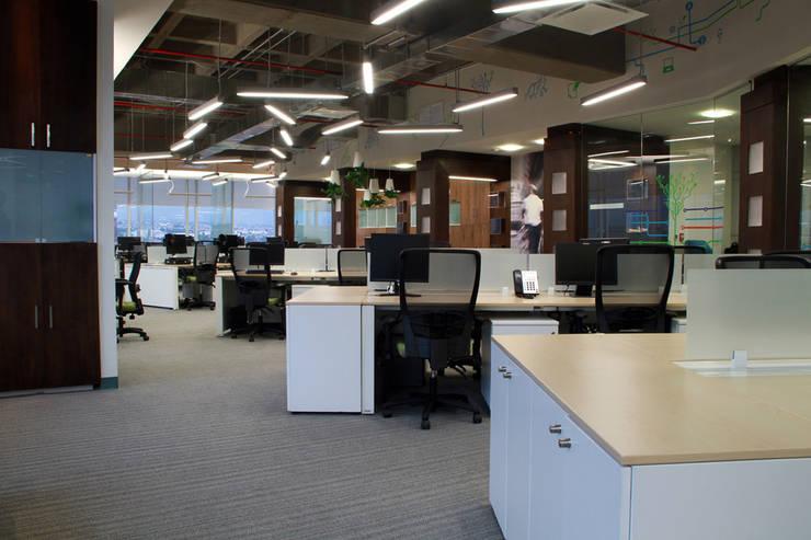 Barrilito : Estudios y oficinas de estilo  por DIN Interiorismo
