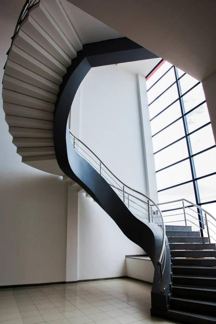 Interior: Edifícios comerciais  por Linda Schweidzon Arquitetos