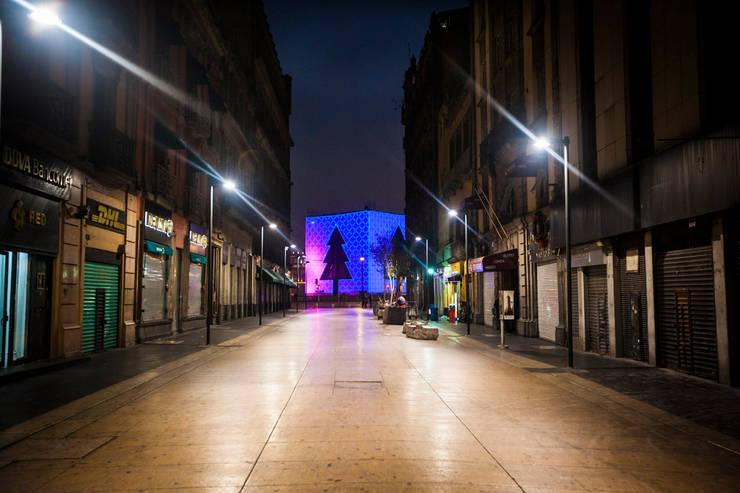 Árbol Ciudad de México : Casas de estilo  por Miguel de la Torre Arquitectos