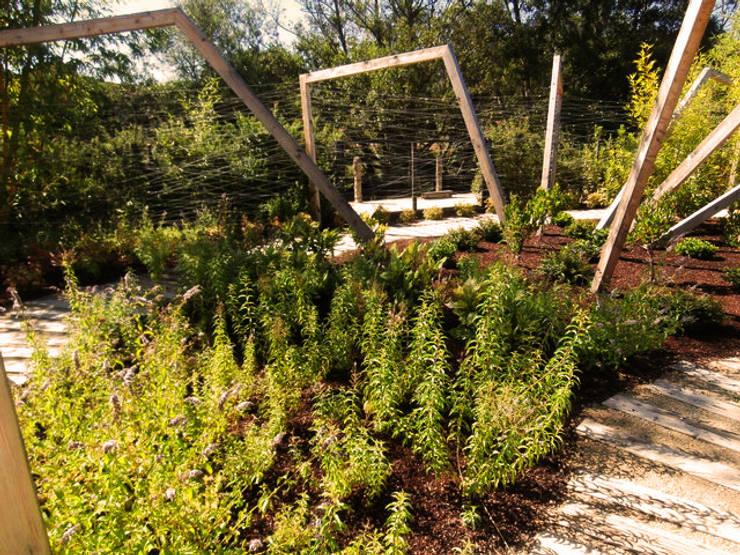 Projekty,  Ogród zaprojektowane przez Aida Lopez Paisajista