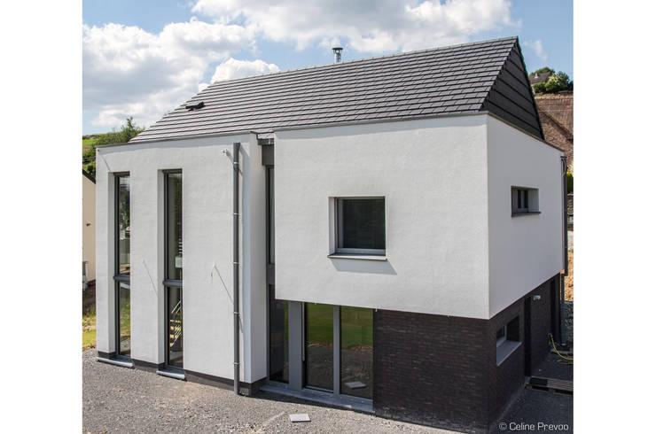 DELTA Architects Belgique:  tarz Evler