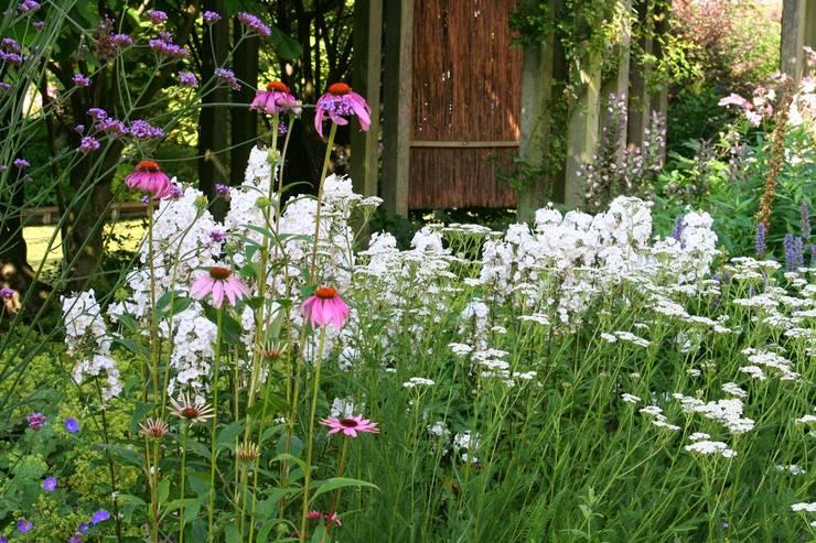 Jardines de estilo rural de Carla Wilhelm