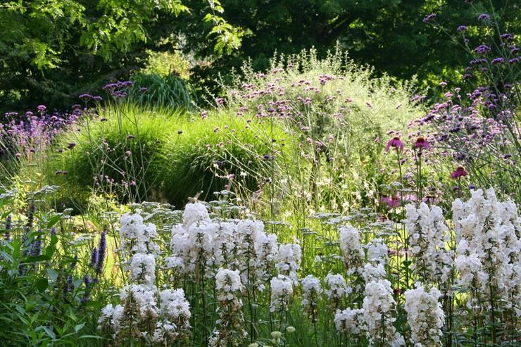 Weelderige border in cottagestijl:  Tuin door Carla Wilhelm, Landelijk
