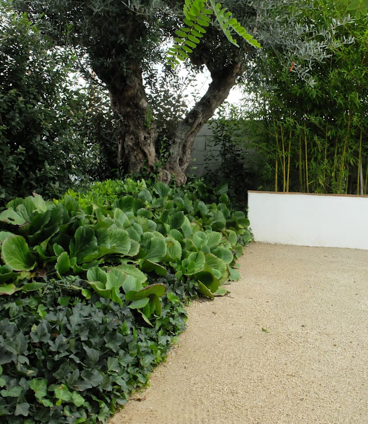 Recuperação de tanque de rega: Jardins  por Atelier Jardins do Sul,Eclético