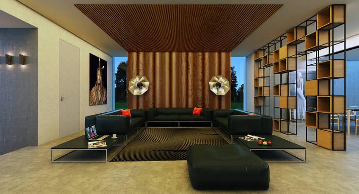 House 96: Гостиная в . Автор – ALEXANDER ZHIDKOV ARCHITECT