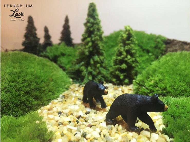 Terrarium love – Bear Terrarium:  tarz İç Dekorasyon