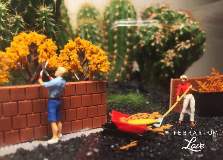 Terrarium love – Park Terrarium:  tarz Ev İçi